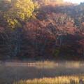 写真: つぶ沼2
