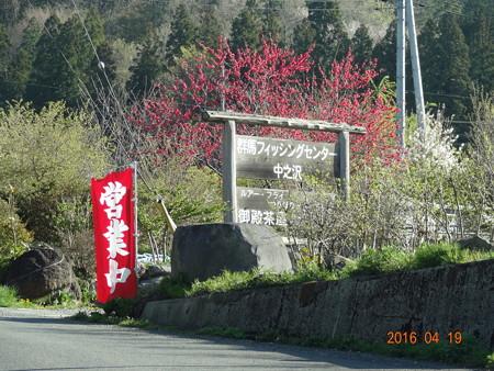 群馬フィッシングセンター中之沢