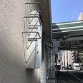 Photos: カカカ