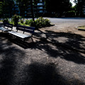 写真: 団地のベンチ