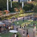 Photos: 動物公園からモノレール