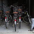 Photos: 自転車置き場にて