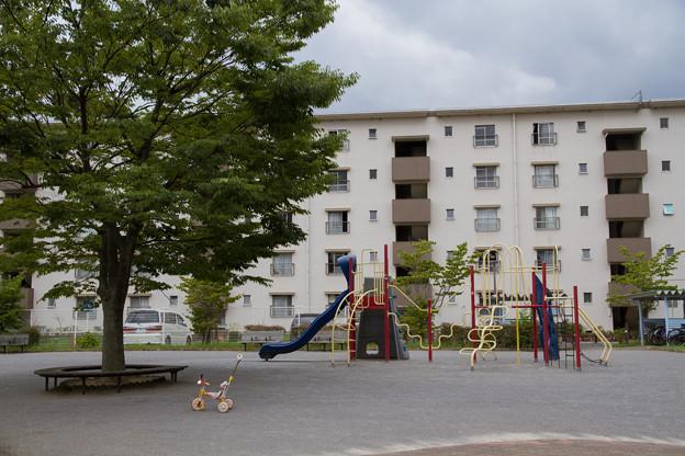 団地の公園