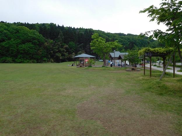 20180512(槻の森運動公園1)