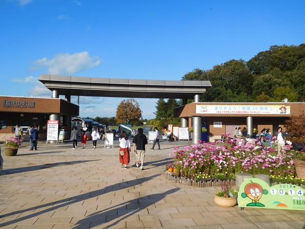 20181014(長岡丘陵公園1)