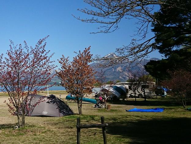 Photos: 20190504(天神浜オートキャンプ場4)