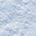 Photos: 最高気温氷点下6℃
