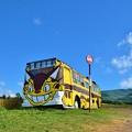 写真: 猫バス
