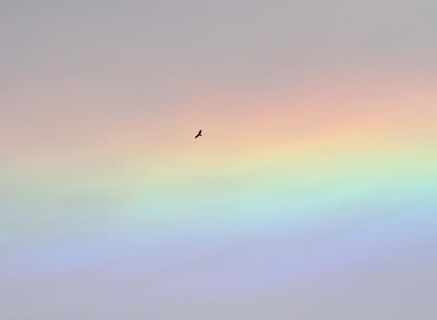 虹の空を征く