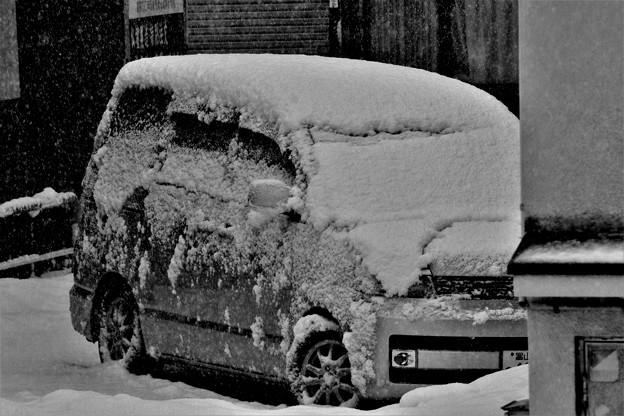 雪の被った車