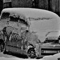 写真: 雪の被った車