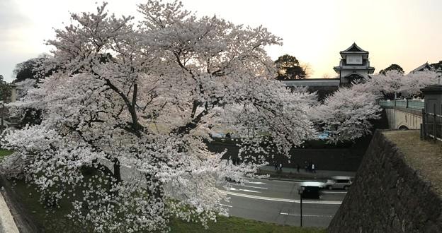 石川門 IMG_7115