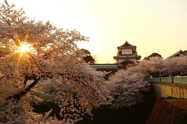 夕陽 IMG_3806