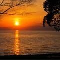 Photos: 夕陽の刻2