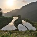 Photos: 山の棚田に朝が来た