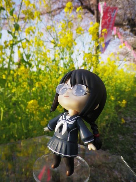 Photos: ネネとお花見2018 B