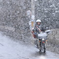 Photos: 春から冬へ・・・