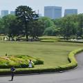 Photos: P5037432天守台から芝生広場を望む