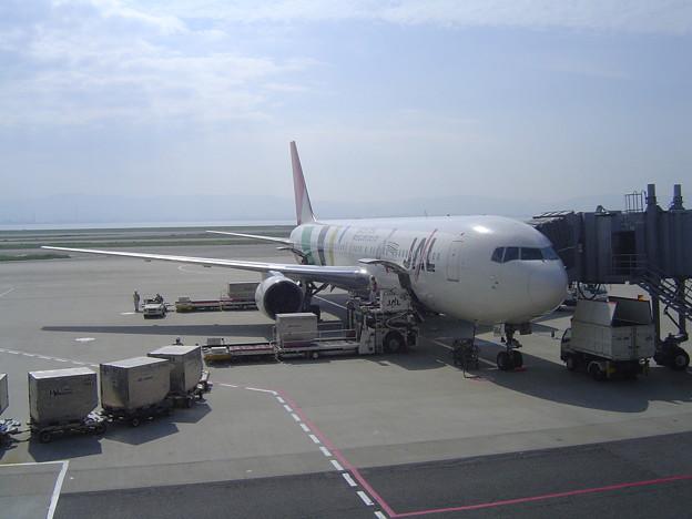 JAL便 関空よりこれで北海道に行きました。