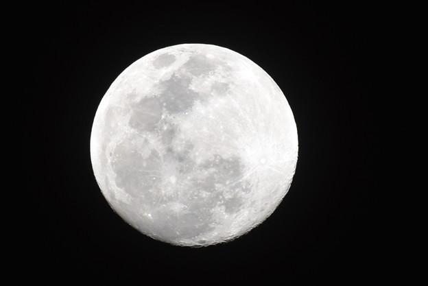 月 トリミング
