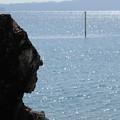 写真: 海を望む