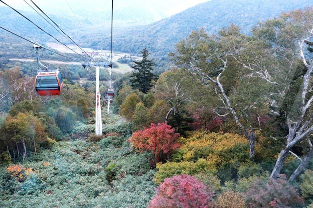 写真: 札幌国際スキー場