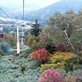 Photos: 札幌国際スキー場