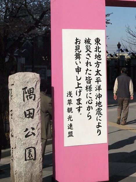 Photos: あの年の春浅草にて