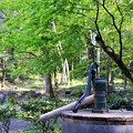 木立の井戸