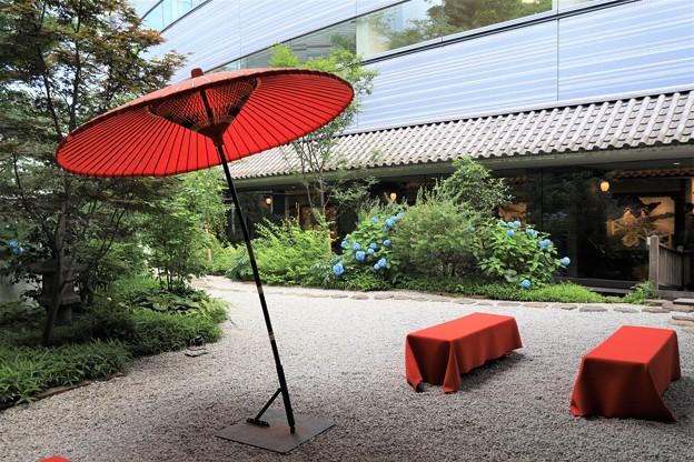 Photos: 紫陽花の中庭