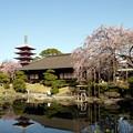 浅草伝法院庭園