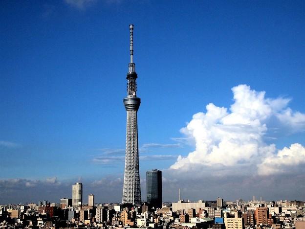 Photos: 2011.8月の夏空