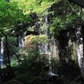 滝の流れる庭園