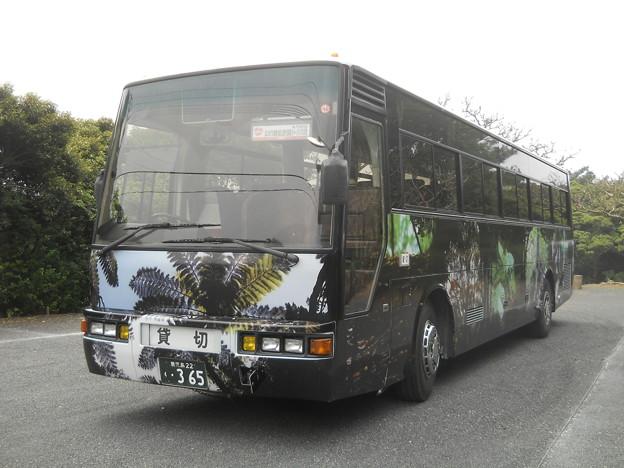 鹿児島22く・365