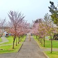 写真: 栗山公園