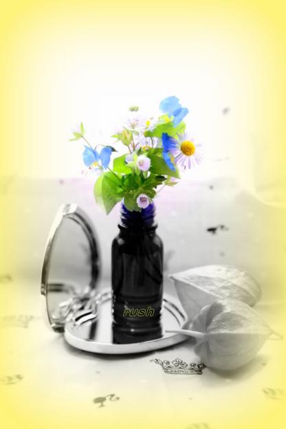 小花を摘んで^^