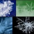 写真: 雪の結晶