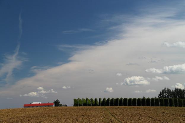 広い大地と秋の空