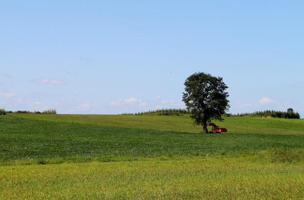 農機具も木陰で一休み!