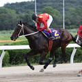 カシノゼウス レース(第12回 ロータスクラウン賞)