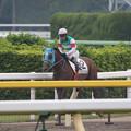 写真: ジョッセルフェルト レース後(15/05/09・3R)