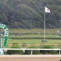 佐賀競馬場 ゴール板_2(15/09/20)