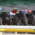 写真: プリンスダム レース(15/05/23・是政特別)