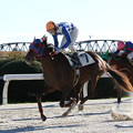 写真: リックカグラ レース(15/12/30・8R)