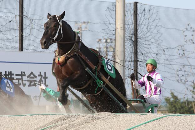 サトクィーン レース(17/06/18・4R)