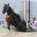 写真: サトクィーン レース(17/06/18・4R)