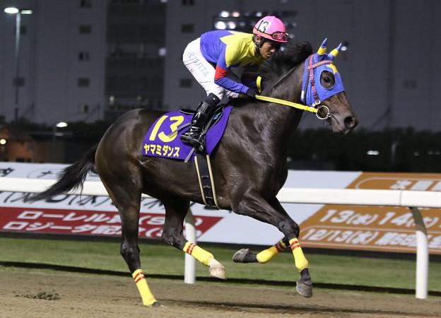 ヤマミダンス 返し馬(17/11/08・第28回 ロジータ記念)