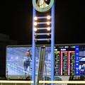 写真: 川崎競馬場 ゴール板(17/11/08)