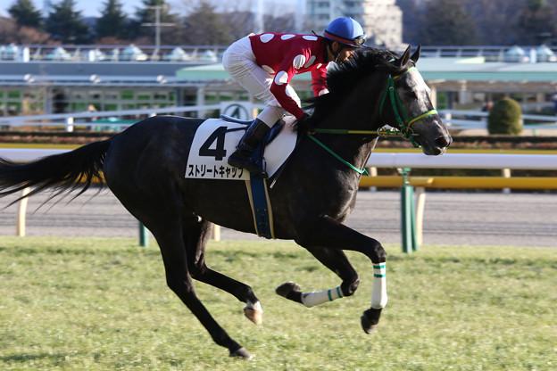 ストリートキャップ 返し馬(17/02/12・12R)