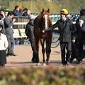 写真: ハッピーグリン(18/01/28・セントポーリア賞)